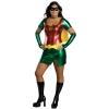 Robin Plus Adult Costume